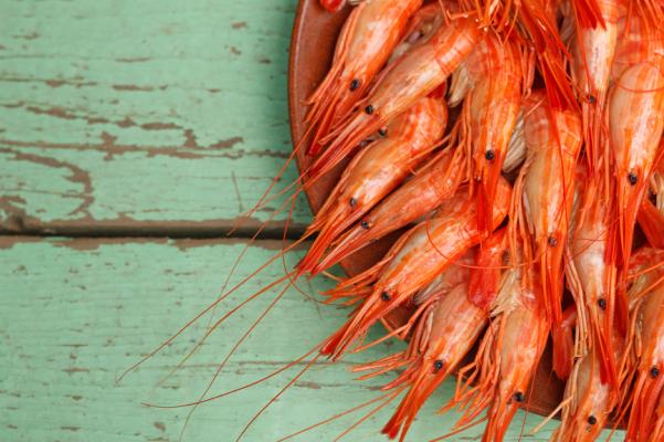 Shrimp platter with copyspace