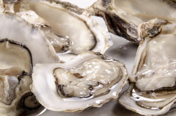 fünf frisch geöffnete Austern